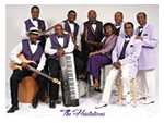 The_Hesitations